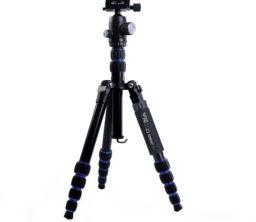 c5-compact-1-high-res_500500_o